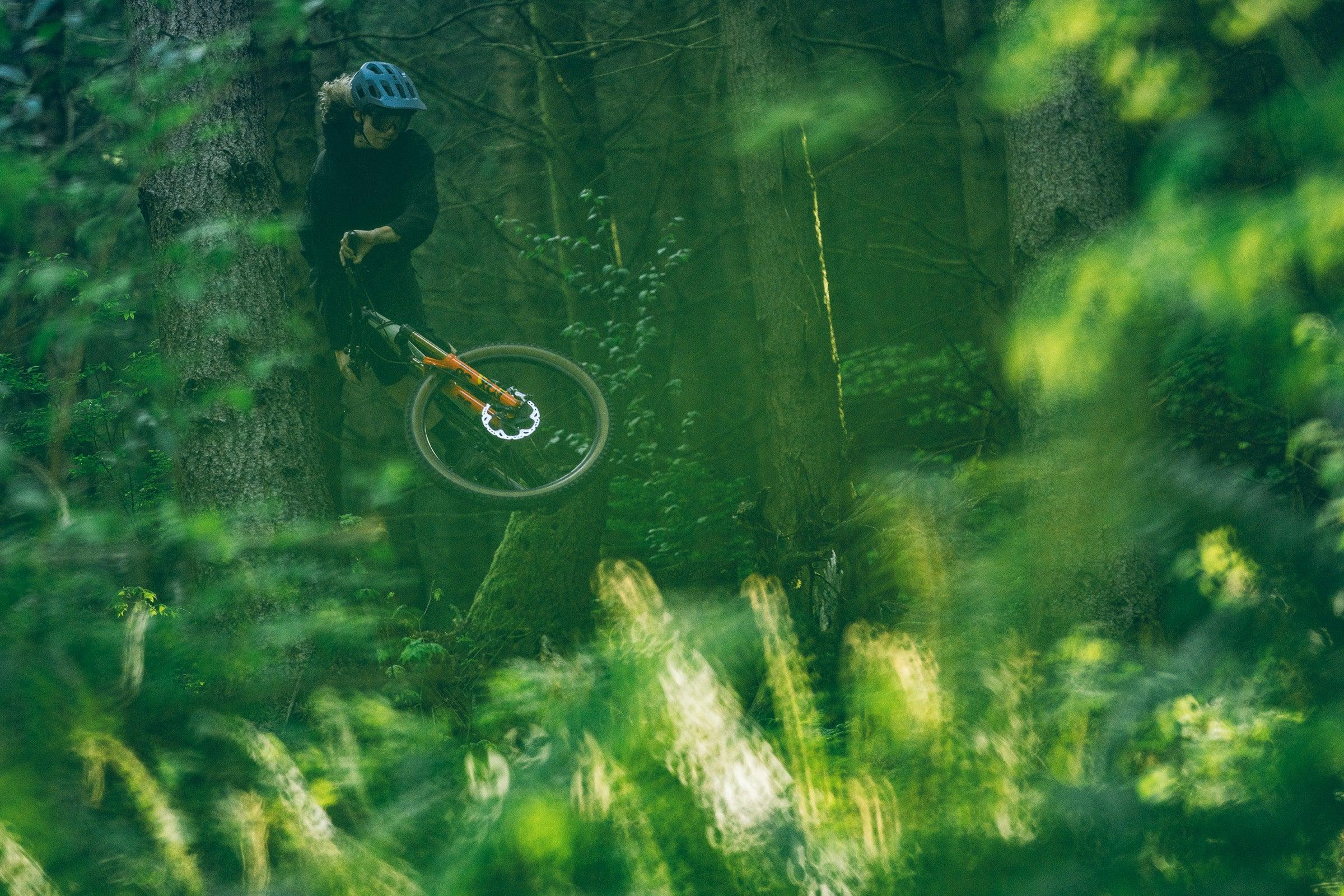favorite bike Bellingham beta test